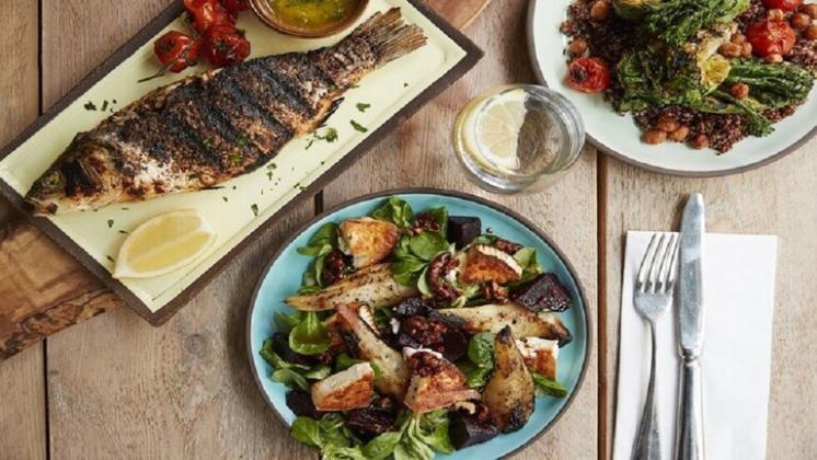 أفضل ۵ أطعمة لزيادة متوسط العمر المتوقع للانسان