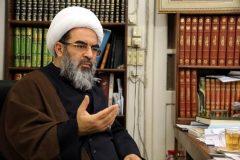 امام (قدس سره )دنبال این بود که حقیقبت اسلام رابرای بشریت شکوفا کند