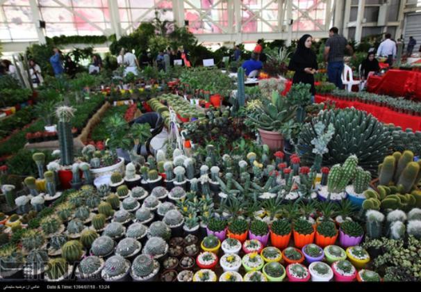 دومین نمایشگاه گل و گیاه قم برگزار می شود