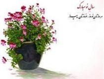 اعلام برنامه فعالیت مراکز درمانی تامین اجتماعی قم در ایام نوروزی ٩٨
