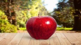 فی التفاح دواء وشفاء،كشف سر فوائد تناول تفاحة واحدة يوميا!