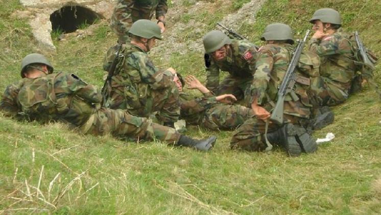 صدق او لاتصدق..بعوضة عراقية تصرع جنديا تركيا !