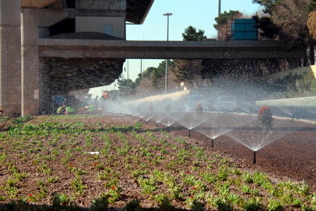 حذف آبیاری تانکری از فضای سبز شهری و جنگلی قم