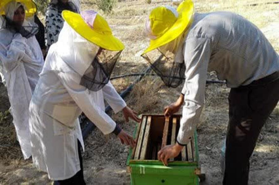 بهره مندی ۳۰۵ نفر از روستائیان قم از آموزشهای مهارتی