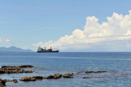 رجلان من جزرسليمان يصمدان۲۹ يوما في عرض البحر